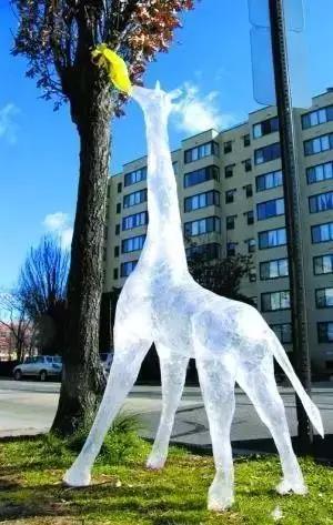 透明的封胶带雕塑
